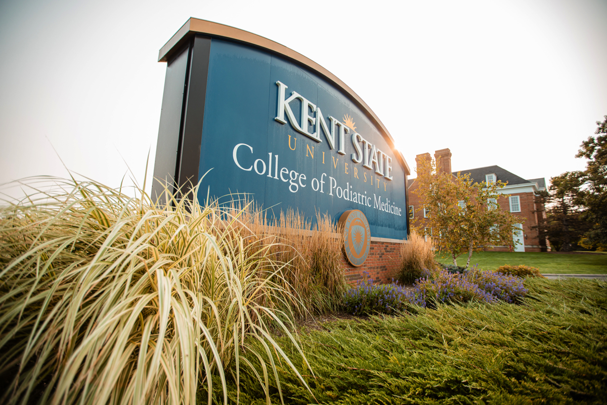 Prairie grasses at Kent State University landscape