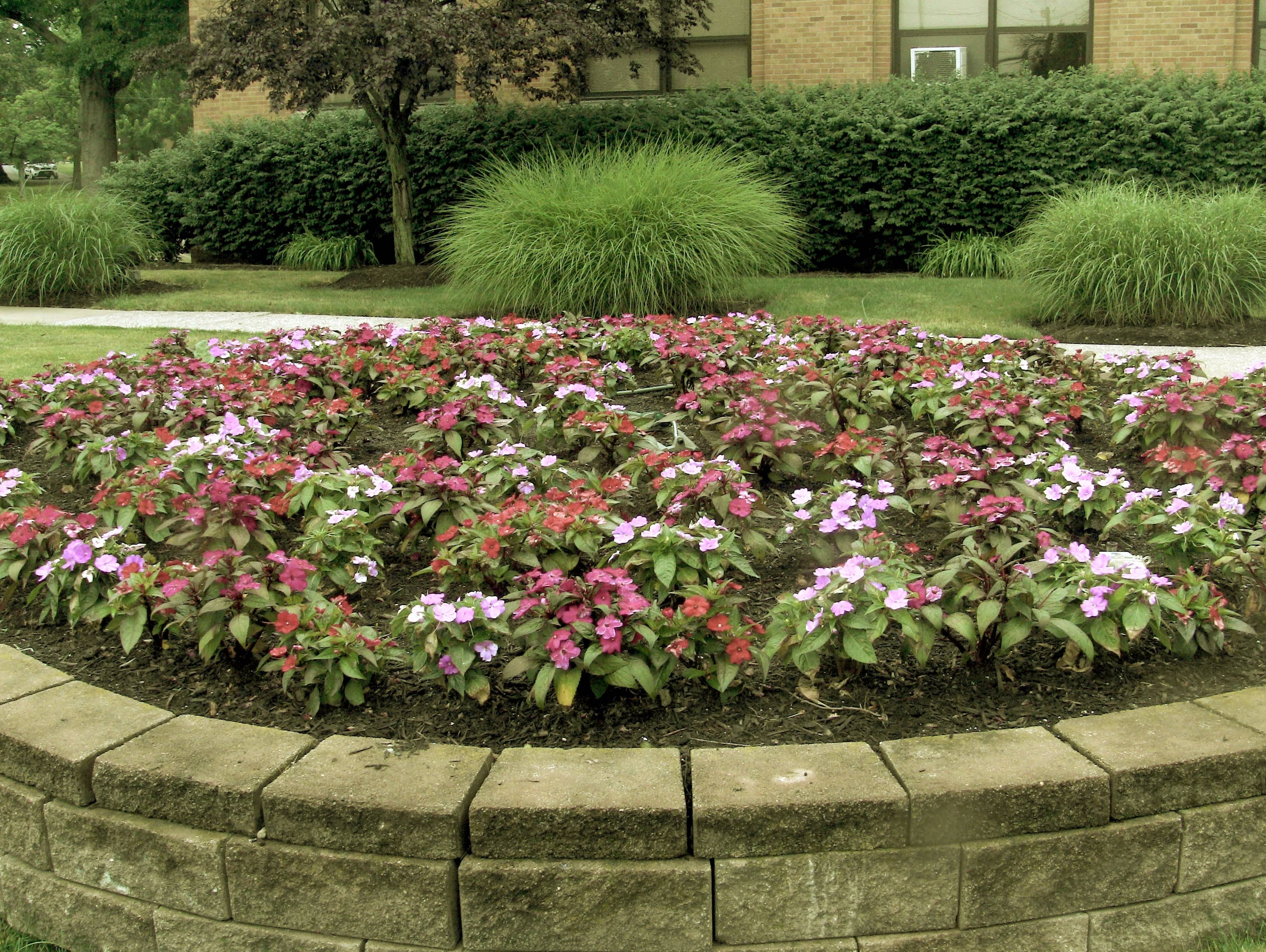 Spring annuals at industrial property