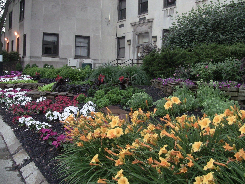 Landscape plants at a healthcare facility entrance
