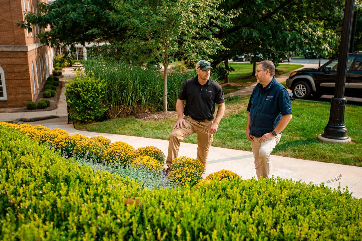 plant enhancements at HOA property