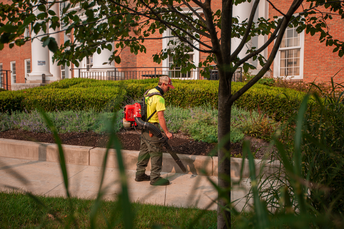 Commercial landscaping leaf cleanup