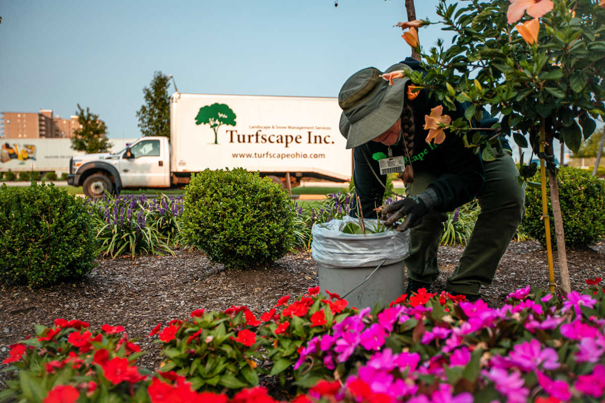 Landscape crew cleaning garden beds