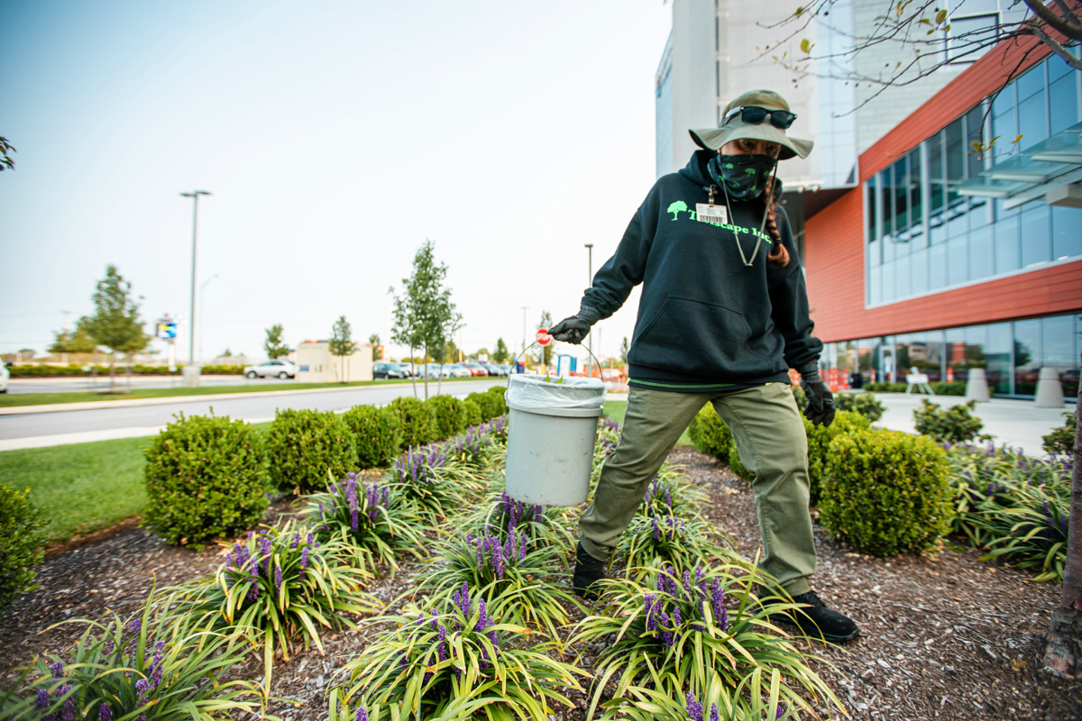 Commercial property spring clean-up