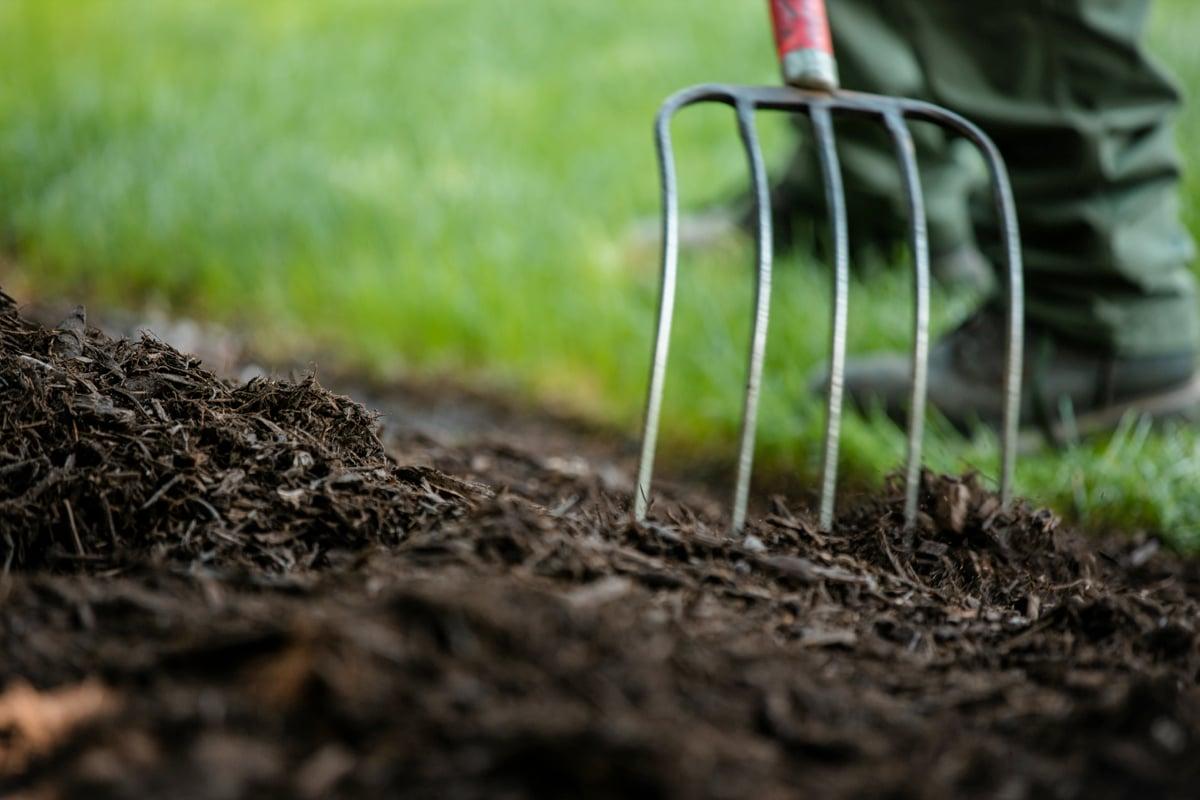 Mulch cultivation