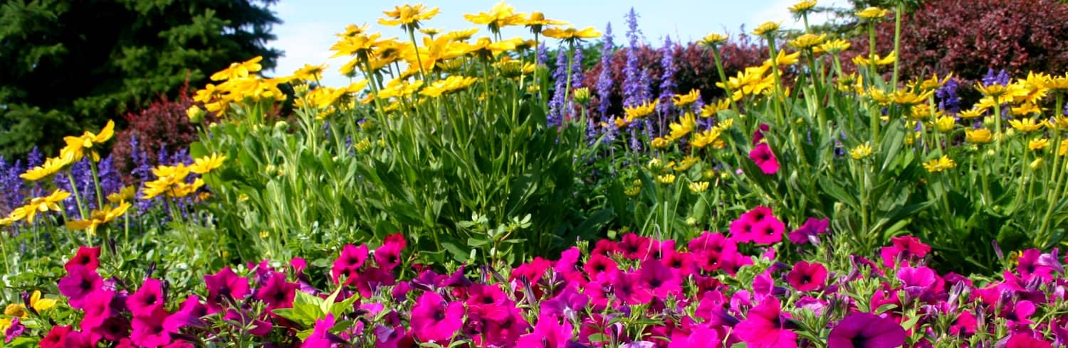 commercial landscaping testimonials