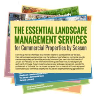 landscape-management-services.png