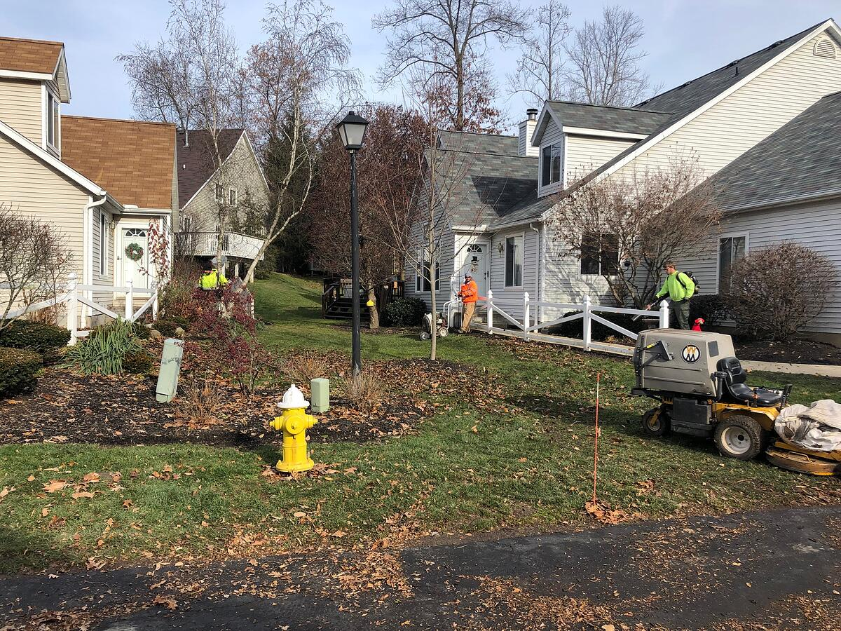 commercial property fall leaf cleanup