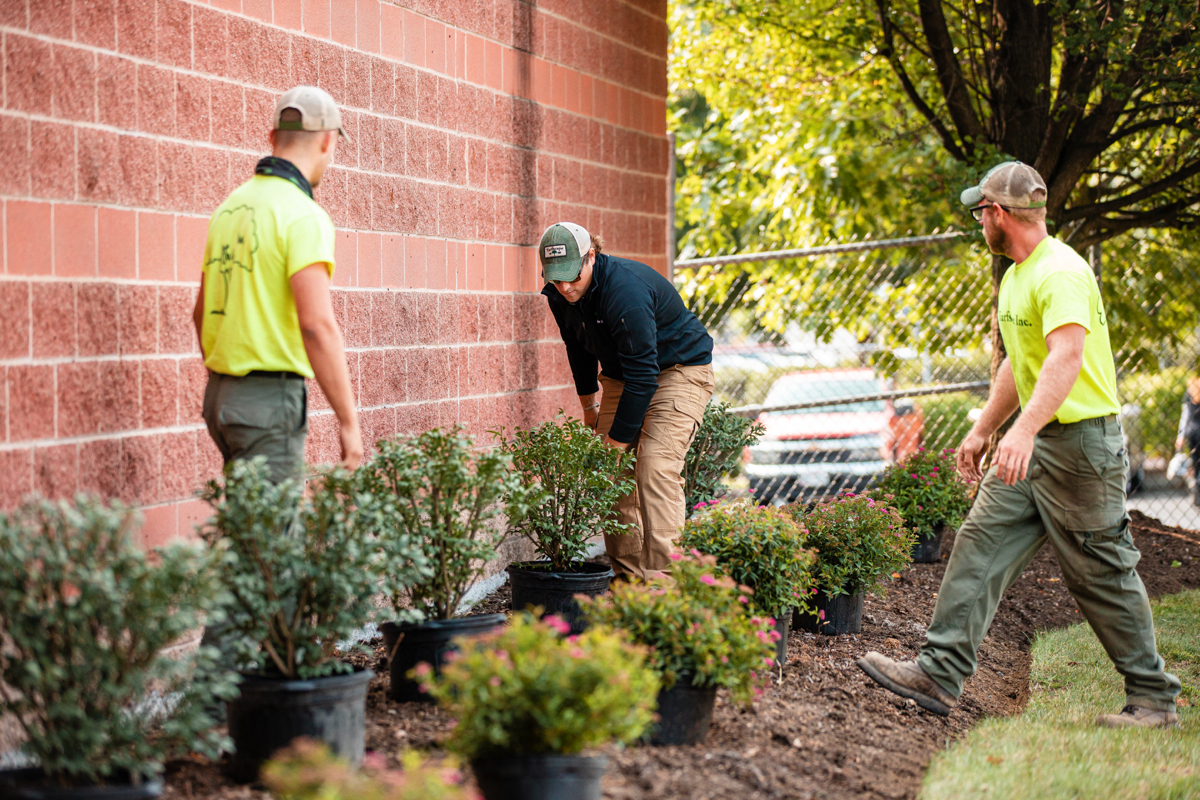 Professional landscape crew installing shrubs at a commercial facility property