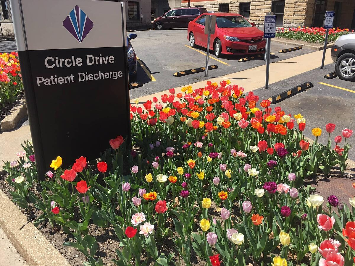 Flowers around hospital signage