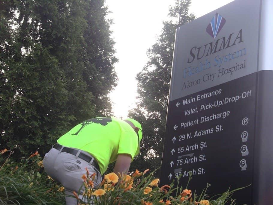 Regular sign landscape maintenance