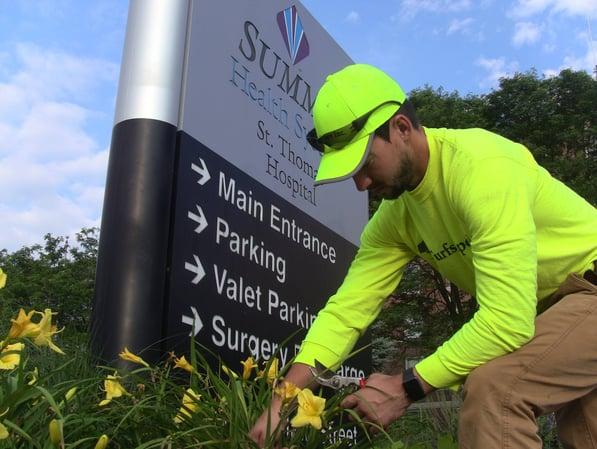 commercial landscape maintenance technician
