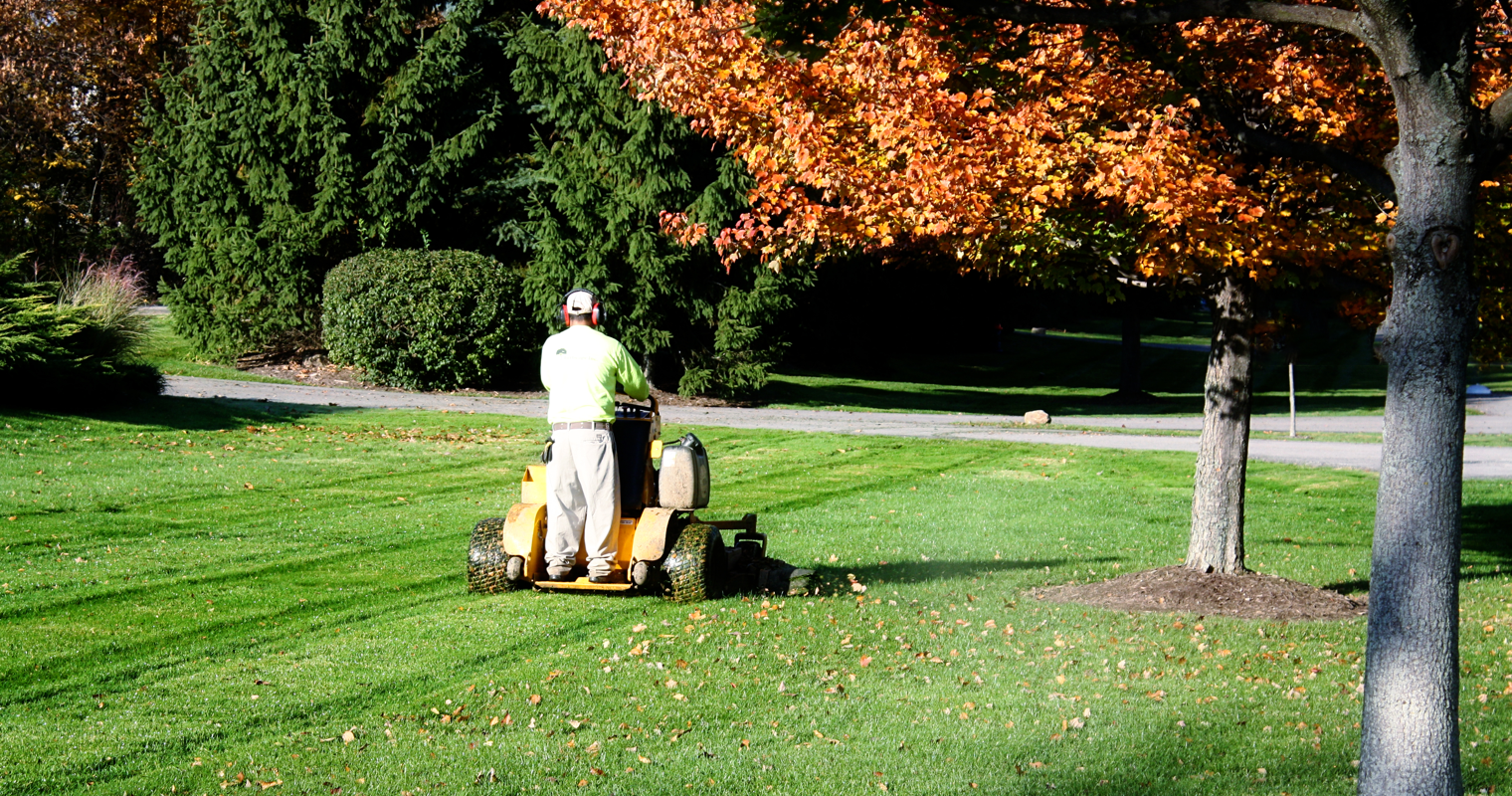 year-round-grounds-maintenance-provider.png