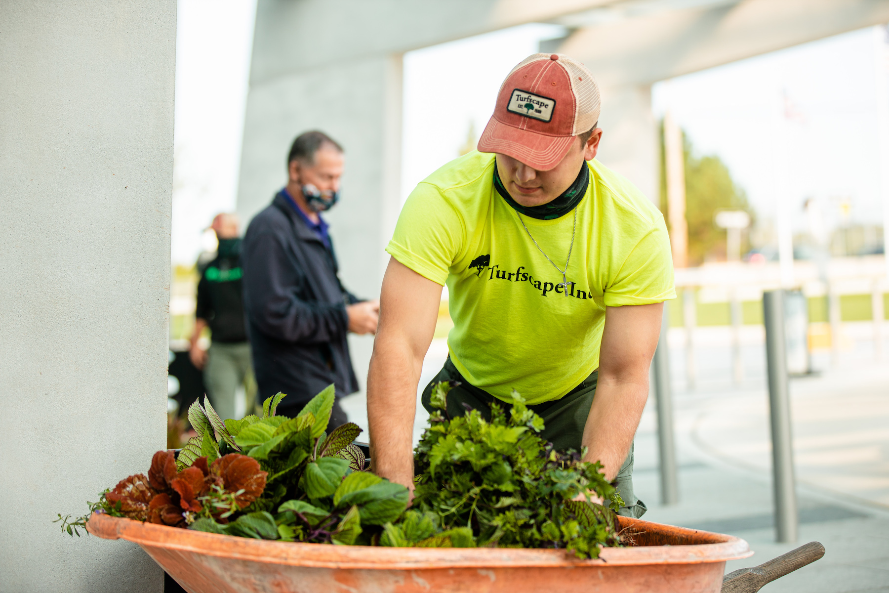 installation-plants-crew