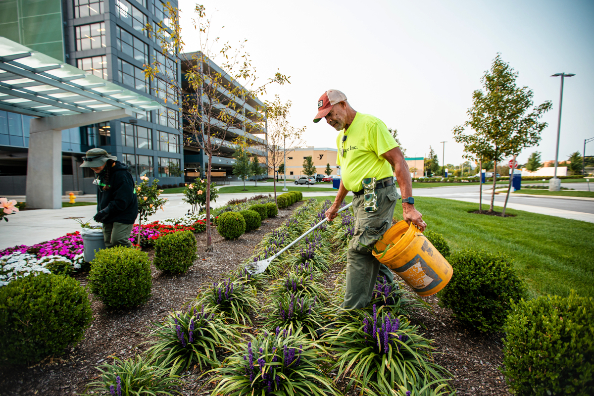 The Most Important Landscaping Services for Hospitals and Healthcare Facilities
