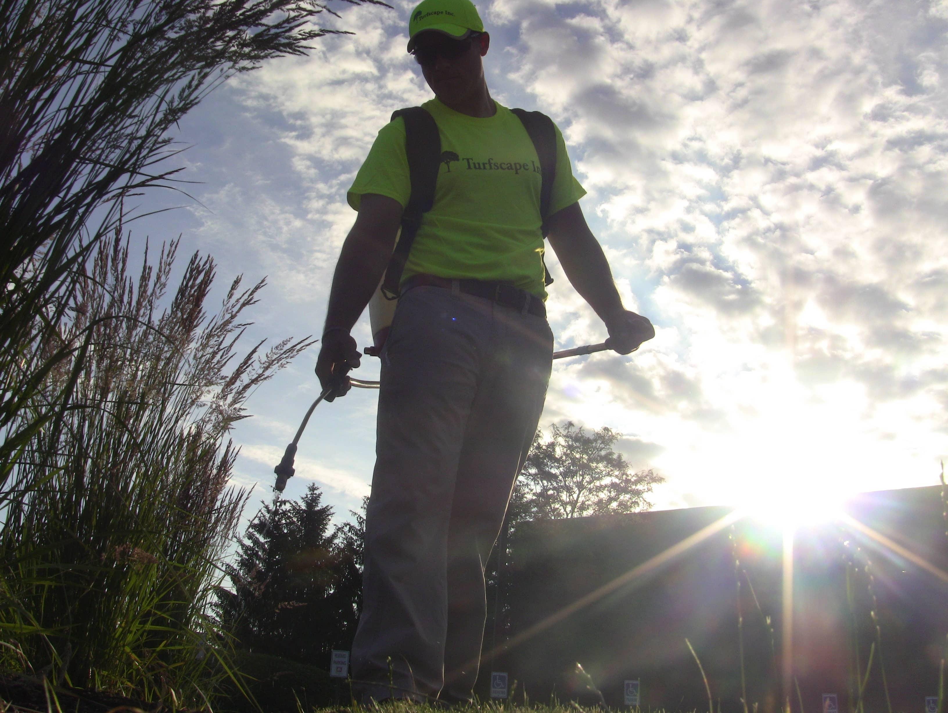 Commercial Landscape Tip: Pre-Emergent Weed Control for Landscape Beds