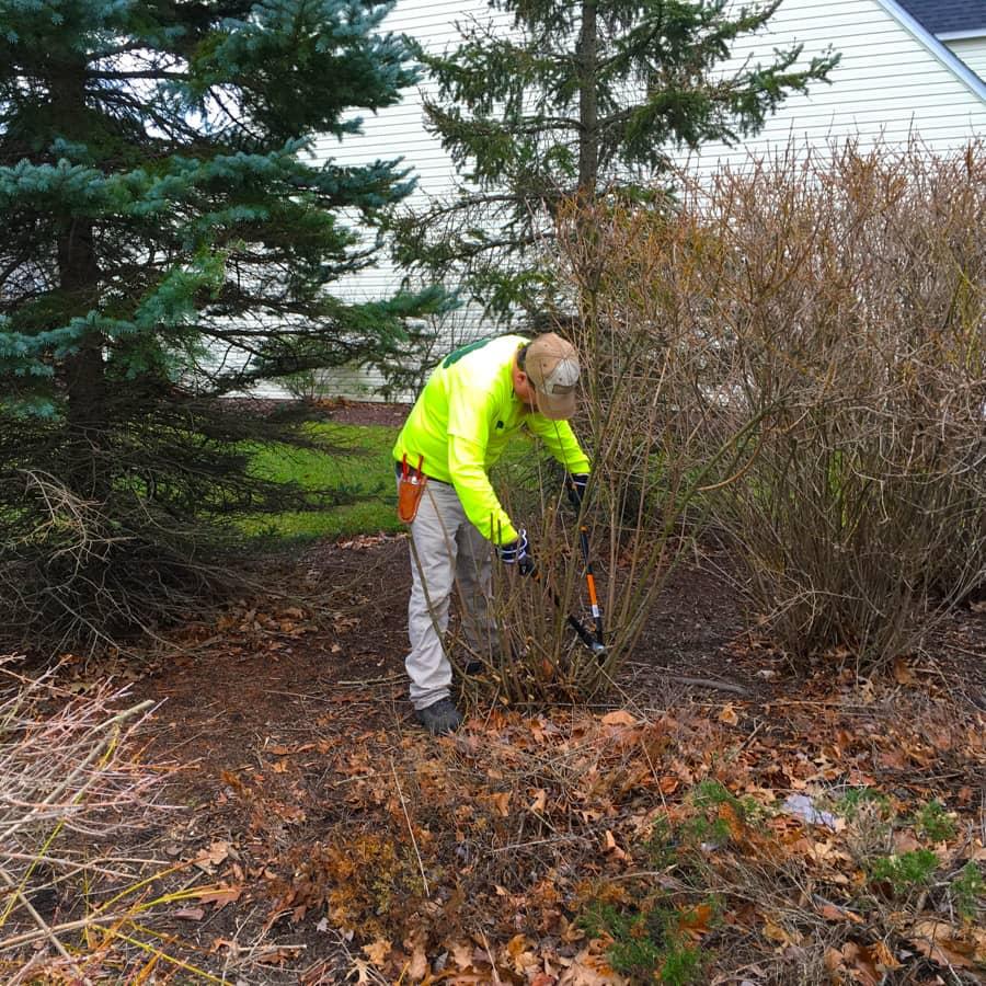 commercial grounds maintenance leaf