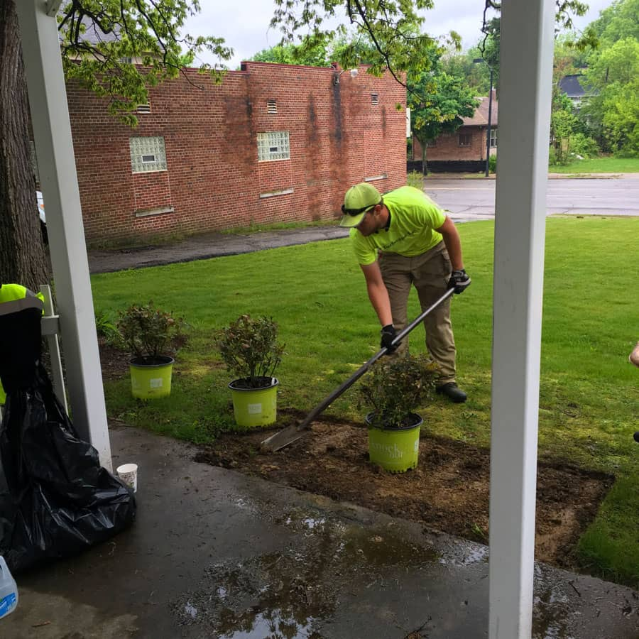 commercial landscaping planting