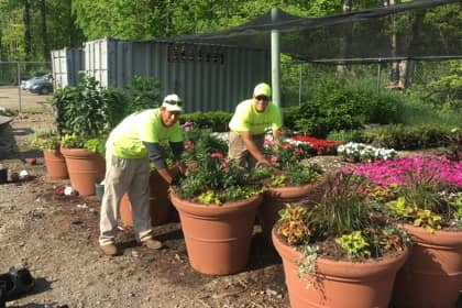 The Best Time to Plant in Northeast Ohio