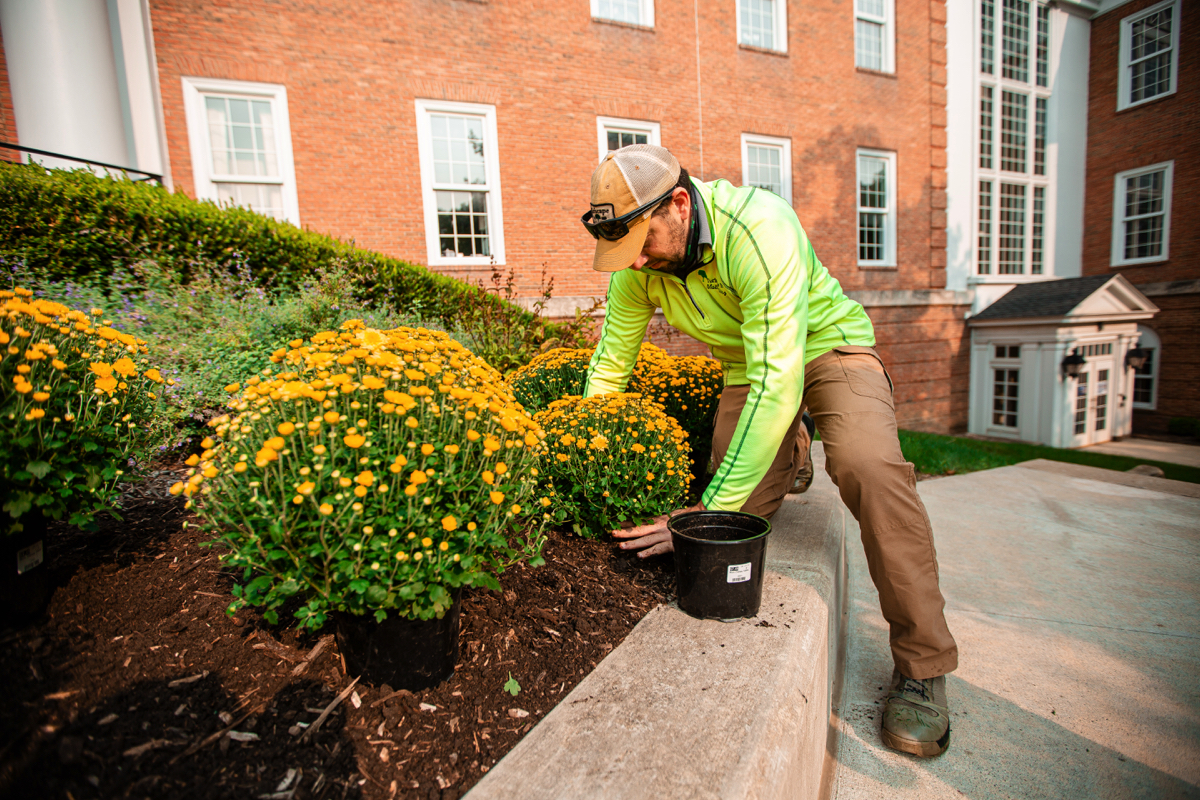 5 Commercial Landscaping Trends For 2021