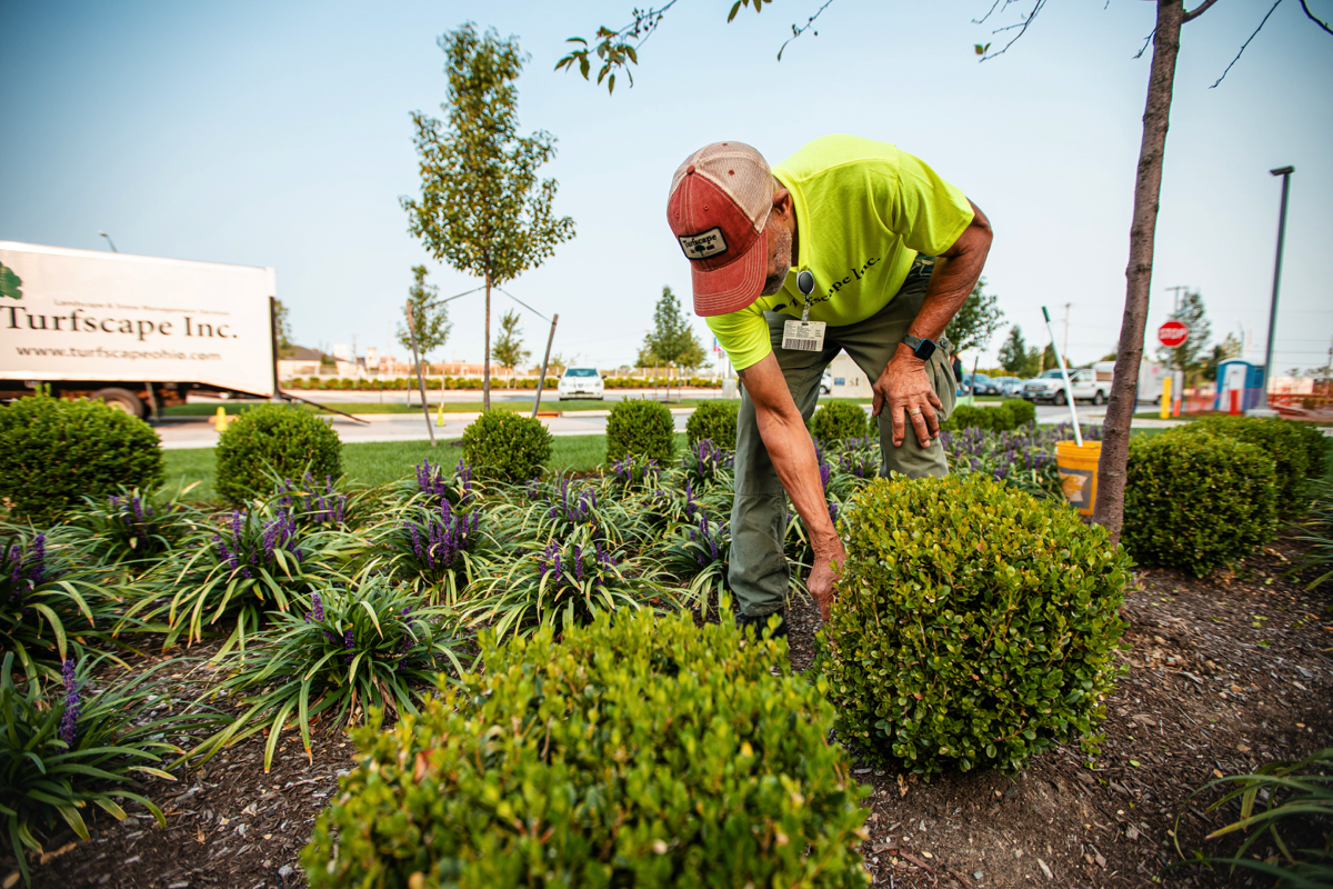 Commercial Landscaping Services For Fulfillment Centers, Warehouses and Other Industrial Properties in Northeast Ohio