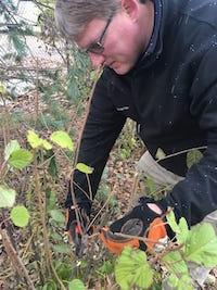 dormant-pruning-1.jpg