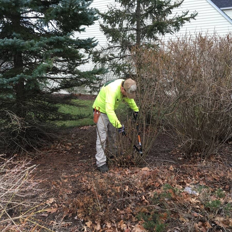 commercial grounds maintenance cleanup