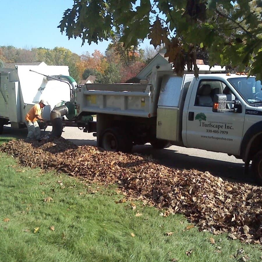 commercial grounds maintenance leaf pickup