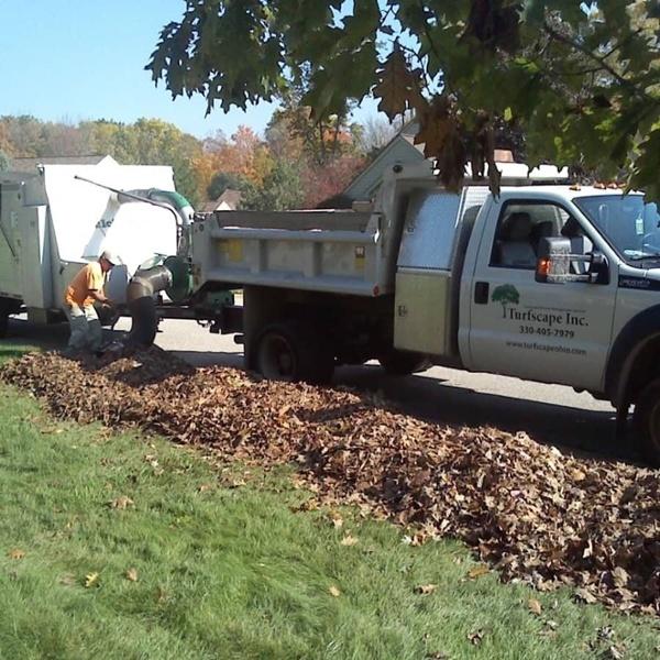 commercial grounds maintenance leaf pickup