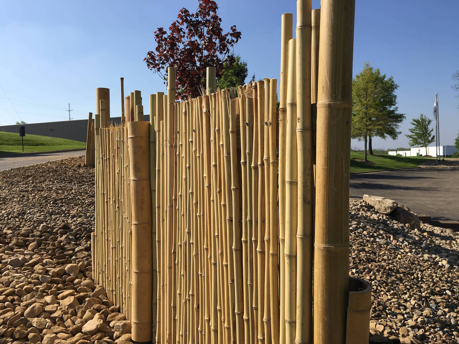 landscaping-bamboo-fencing.jpg