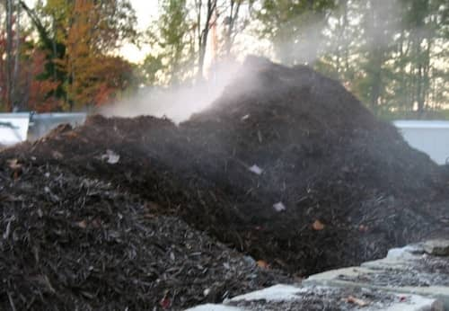 The Best Mulch for Your Landscaping Needs